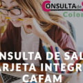 Consulta de Saldo Tarjeta Integral Cafam